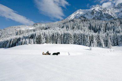 Pferdeschlittenfahrten - Winterurlaub in Wagrain, Ski amadé